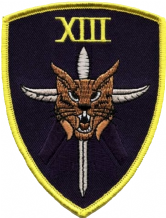 No. XIII (13) Squadron RAF Stabbed Cat Black Shield Embroidered Patch